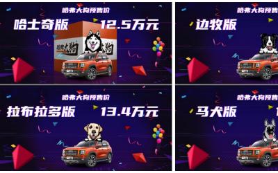 """全网疯抢哈弗大狗,8重惊喜&万元大礼""""售宠莫惊"""""""